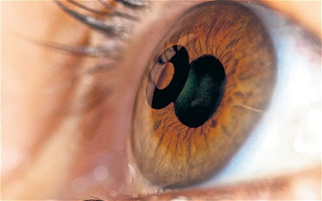 eye-picture_1993801c